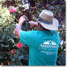 Yard Maintenance - Arrowhead Home Services